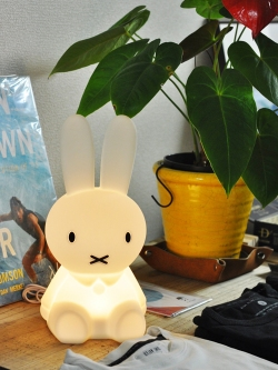 Mr.Maria MIFFY FIRST LIGHT